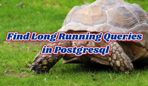 How To Find Long Running Queries in Postgresql using pg_stat_statements